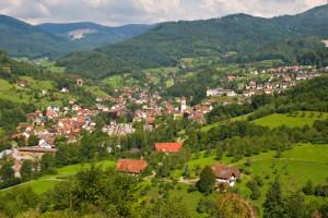 Een dorpje in het Zwarte Woud