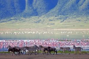 Meer Tanzania