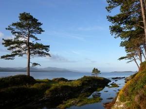 Natuur van Ierland